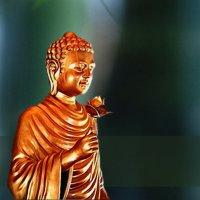 Bodhi Kontinuum