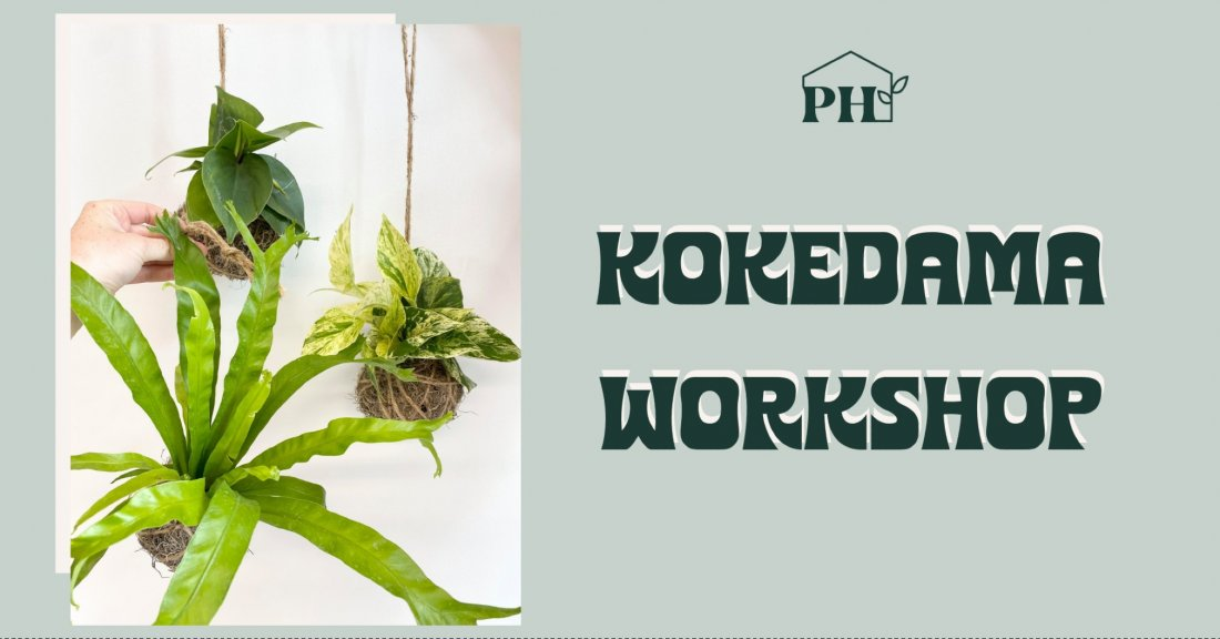 Kokedama Building Workshop